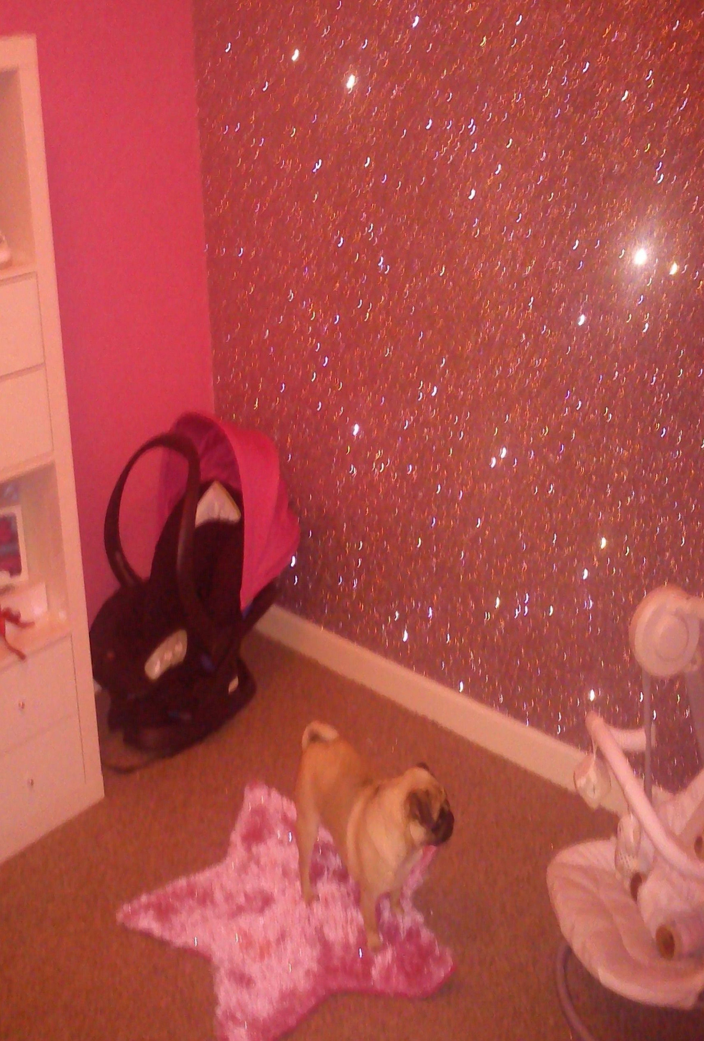 Pin By Pam Winbolt On A Girl Can Dream Glitter Paint For Walls Glitter Accent Wall Boy Room Accent Wall
