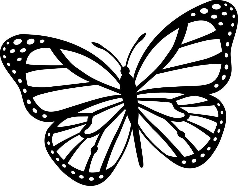 Coloriage de papillons pour enfants, 100 images. Imprimer gratuitement! en 2020 | Coloriage ...