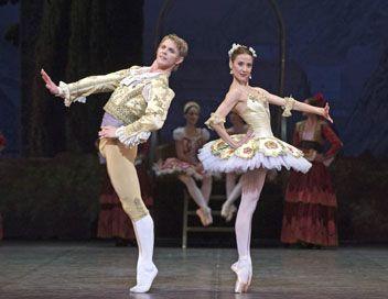 don quichotte ballet l essentiel telerama fr paris opera ballet ballet boys the funniest video ever