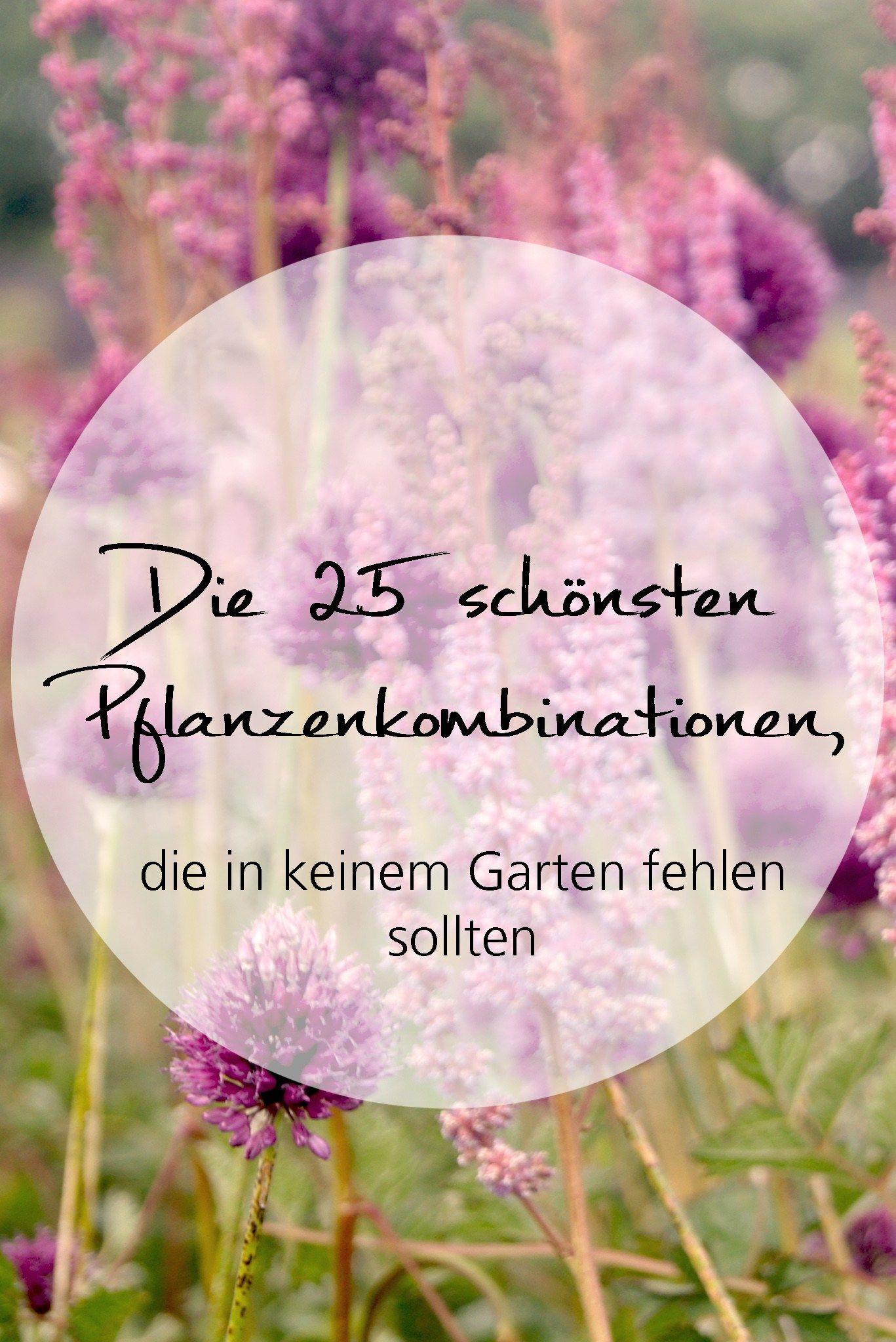 Die 25 schönsten Pflanzenkombinationen, die in keinem Garten fehlen sollten - irislandschaften.ch