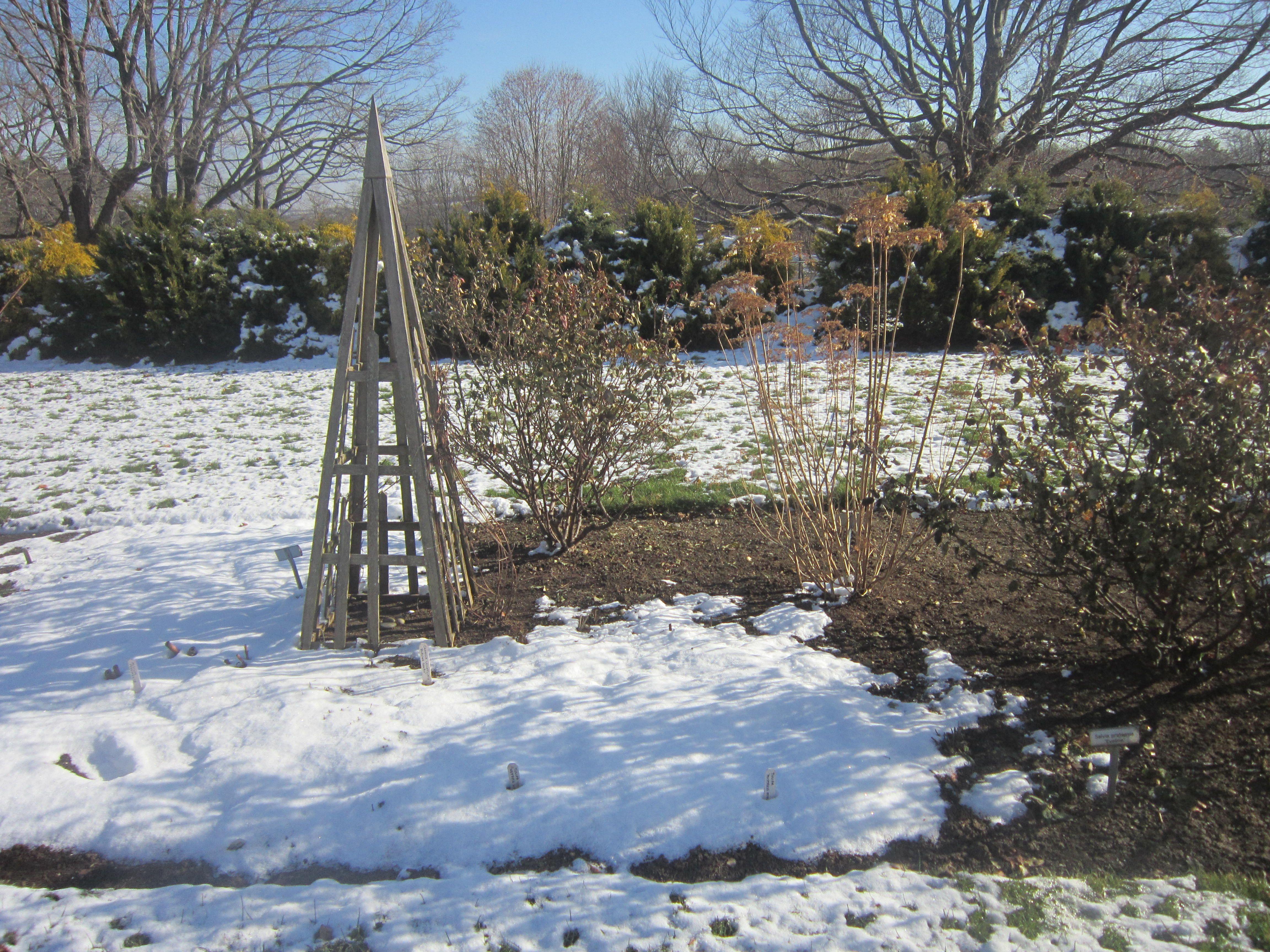 white flower farm u0027s display gardens in winter white flower farm