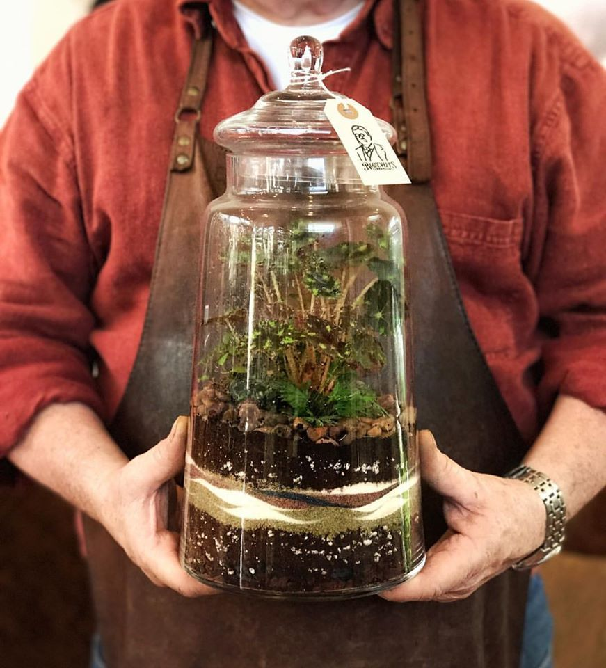 Roosevelt S Terrariums Portland Oregon Classes Love This One