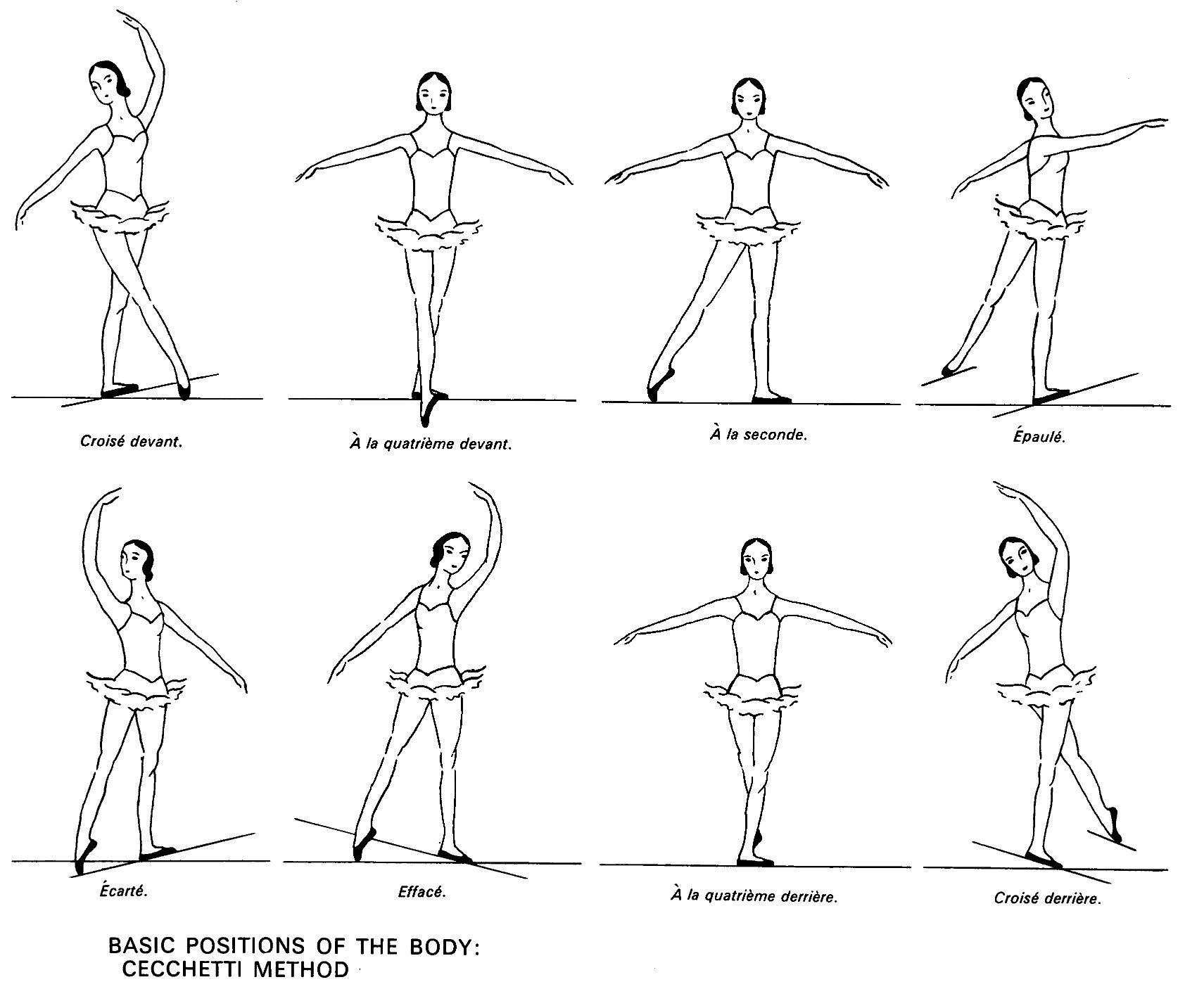 Ballet Positions | ballet 8 positions of the body large