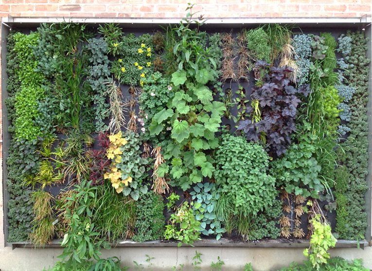Vertical Gardens Also Promote Water Conservation Since