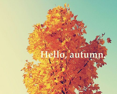 over vanilla skies: (via autumn-afternoons) Happy first day of ...