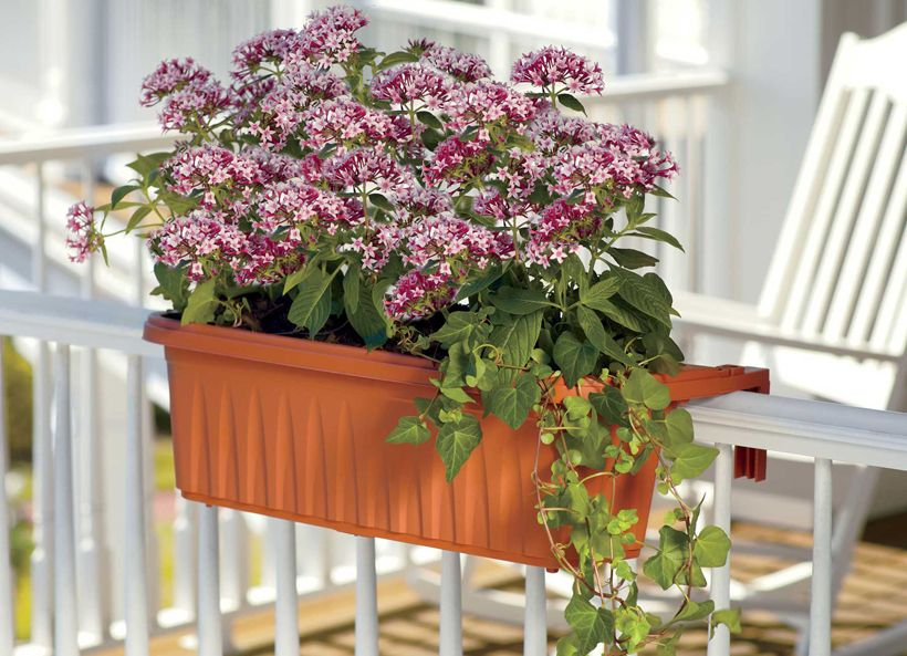 Apartment Gardening Tips How To Choose A Balcony Planter 400 x 300