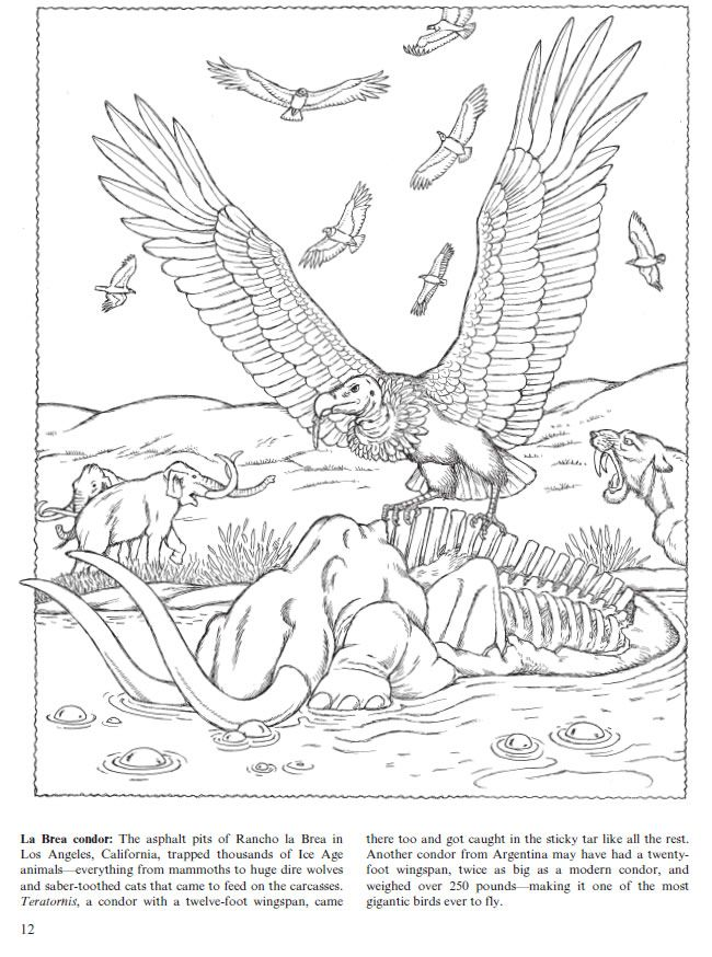 Flying Dinosaurs Coloring Book Feathered Reptiles And Ancient Birds