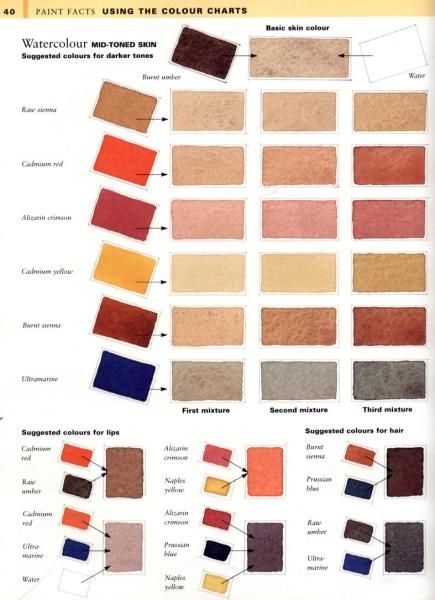 Skin Tone Colour Charts   - WetCanvas … | Watercolor Painting in 2019…