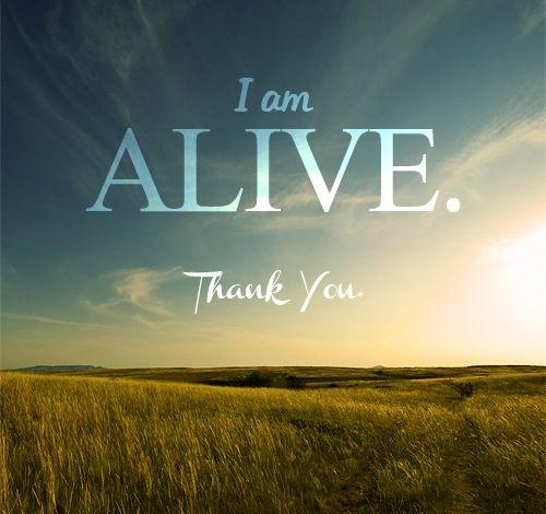 скачать I M Alive торрент - фото 11