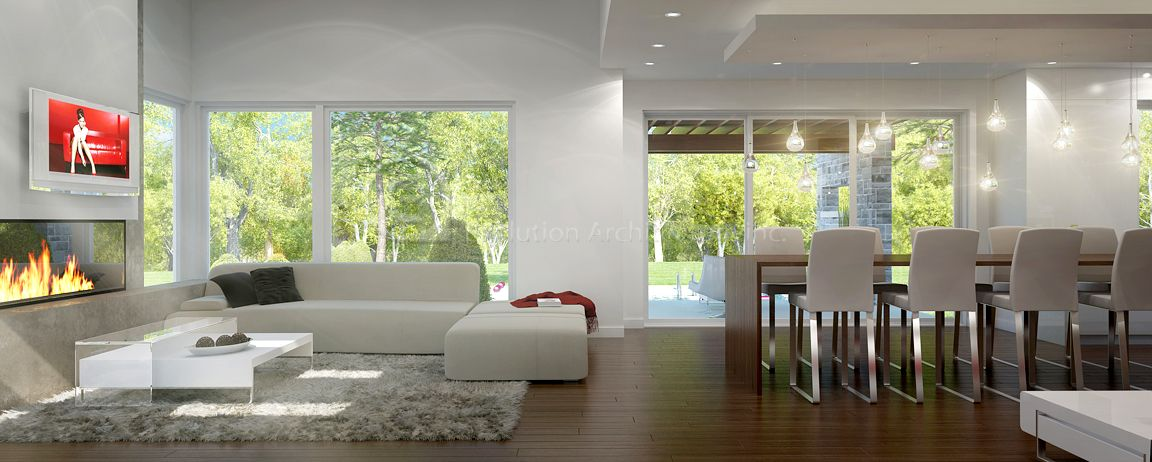 Evolution Architecture,salon /salle à manger moderne,design