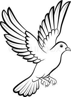 Karikatur Taubenvogellogo Fur Friedenskonzept Und Hochzeitsdesign Vogelumriss Papagei Zeichnung Taube Zeichnung