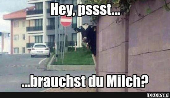 Hey Pssst Lustige Bilder Spruche Witze Echt Lustig