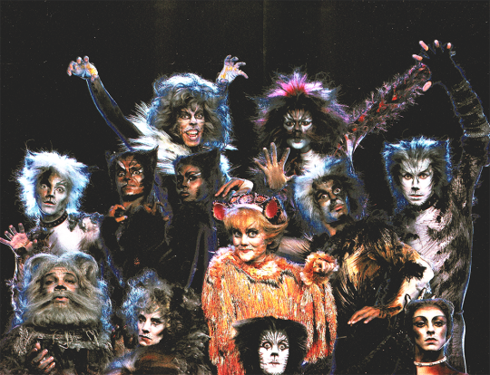 The Midnight Dance Cats Cast Jellicle Cats Why Do Cats Purr