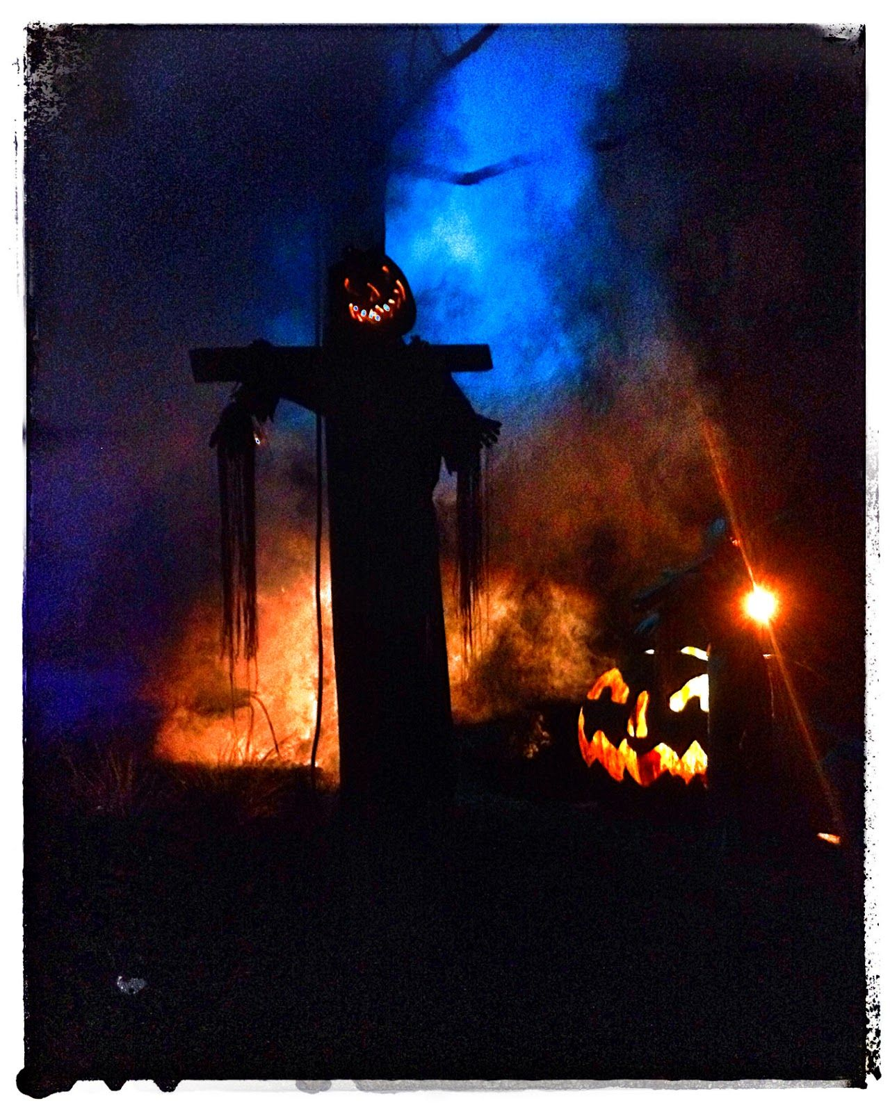Jack o lantern at busch gardens williamsburg eerie spooky - Busch gardens williamsburg halloween ...