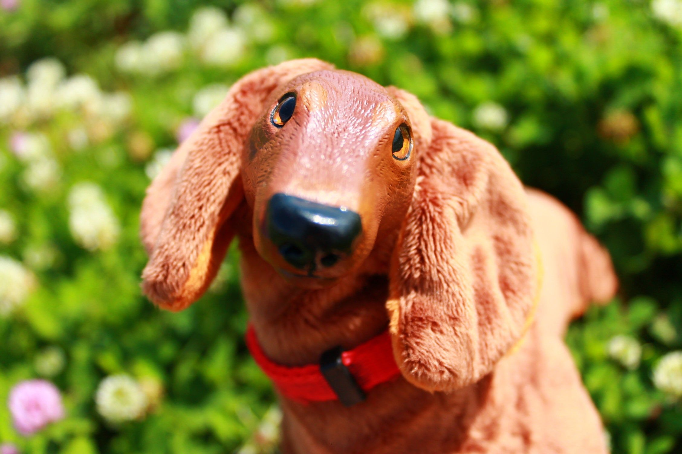 Art Toy Dachshund Dachshund Dog Collectible Doll Dachshund Puppy