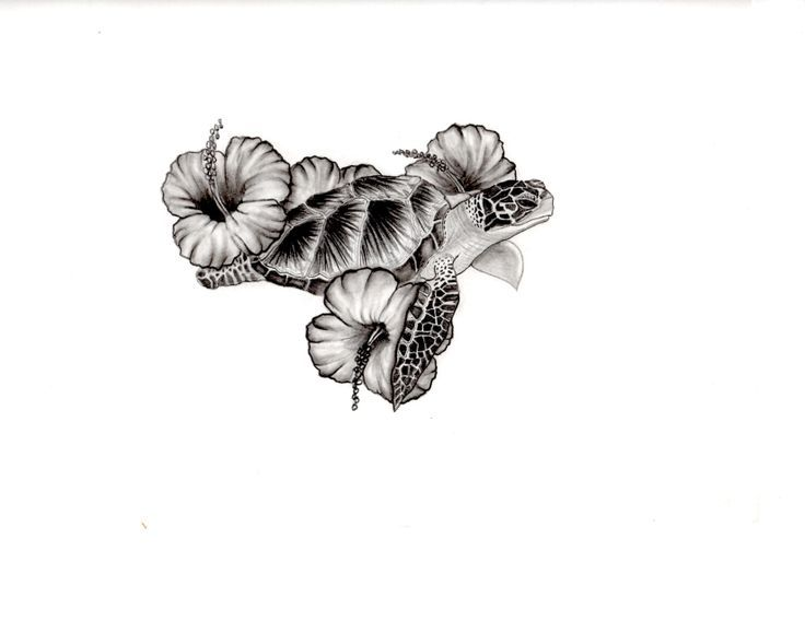 Sea turtle and hibiscus tattoo design tattoo pinterest for Ocean tattoos black and white