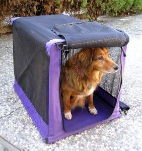 Dog Crate Answer To Every Possible Query Http Blog