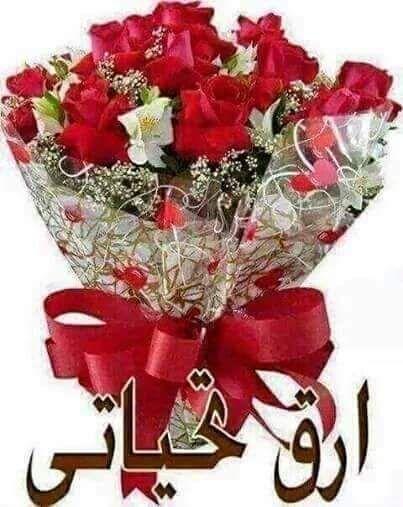 شوف الزهور واتعلم Ebtsamyounis Good Evening Greetings Good Morning Roses Good Morning Flowers