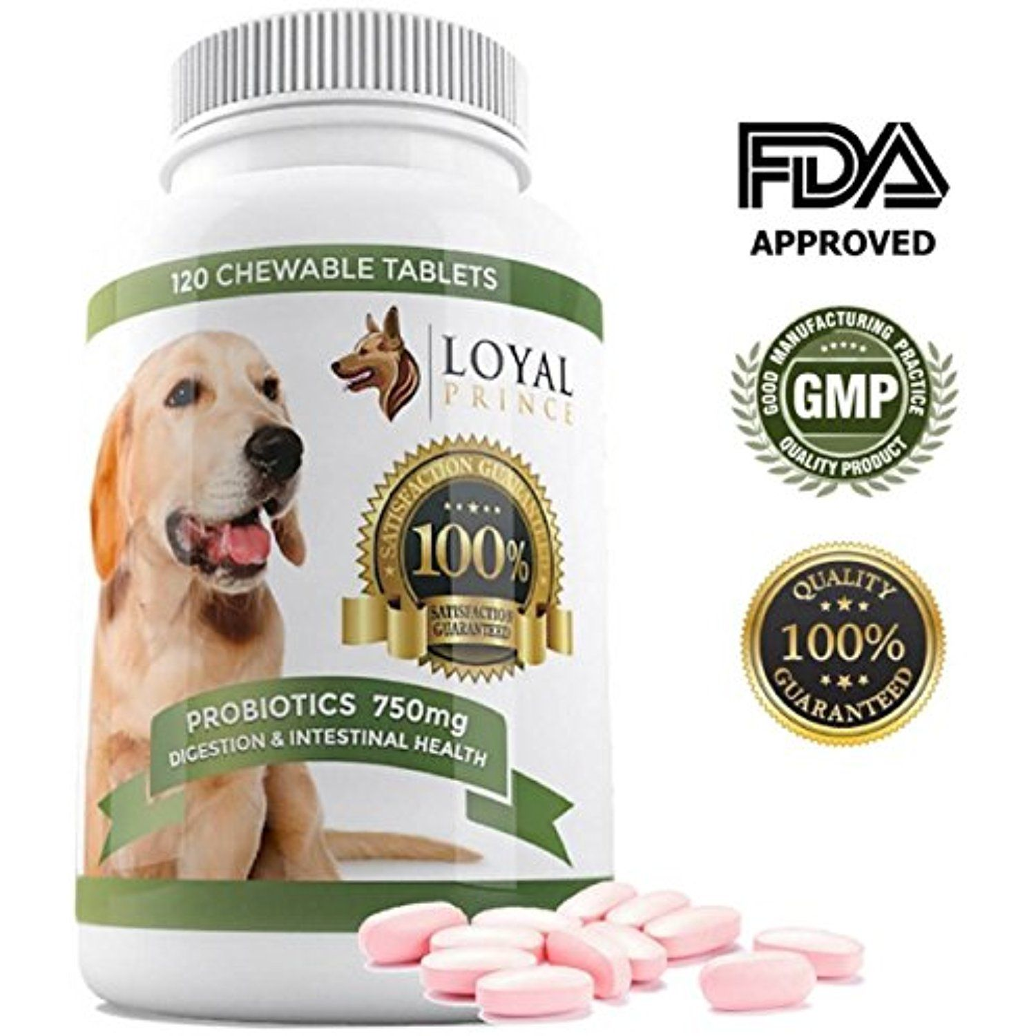 Dog Probiotics Digestive Enzymes for Diarrhea & Yeast infection ...