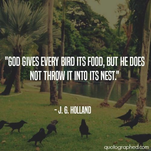 """Inspirational Survival Quotes: """"God Gives Every Bird Its Food"""
