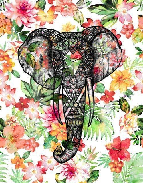 Pin by E Greta on Mixit Elephant background, Elephant
