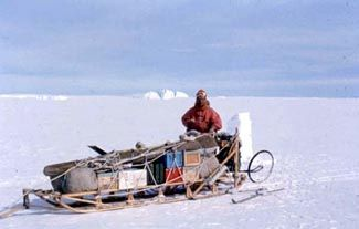 Journal of the Inuit Sled Dog International (With images ...