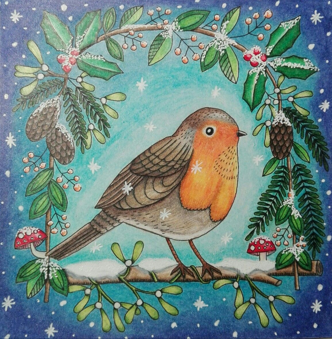 christmas robin weihnachten Rotkehlchen coloring colouring ...