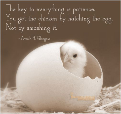 The key to everything is patience..