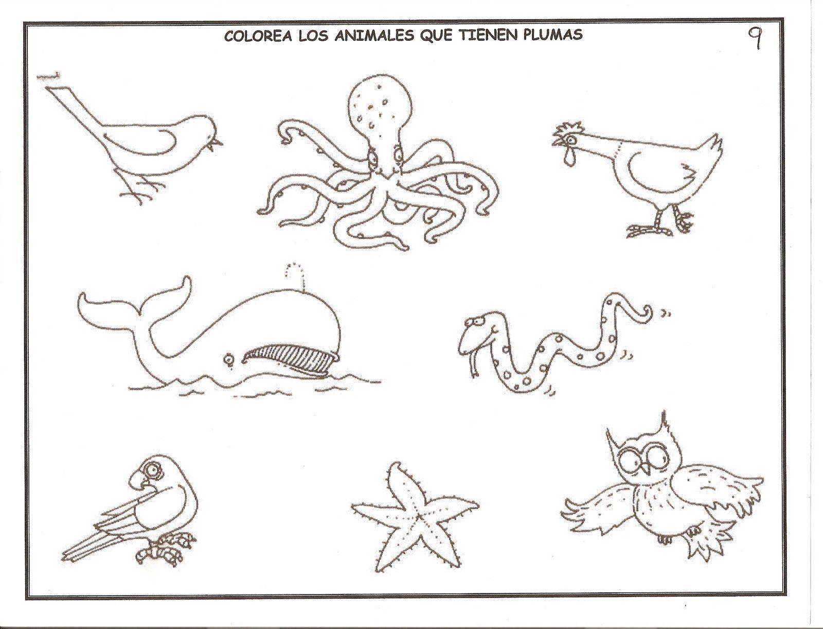 FICHAS DE EDUCACIÓN INFANTIL   Entretenimiento para peques ...
