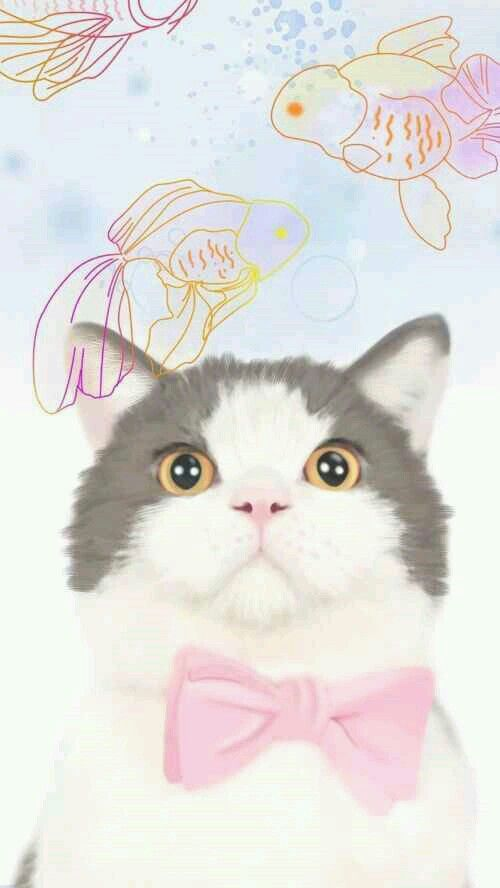 Grey White Pink Bowtie Cat Iphone Phone Wallpaper Background Lock Screen