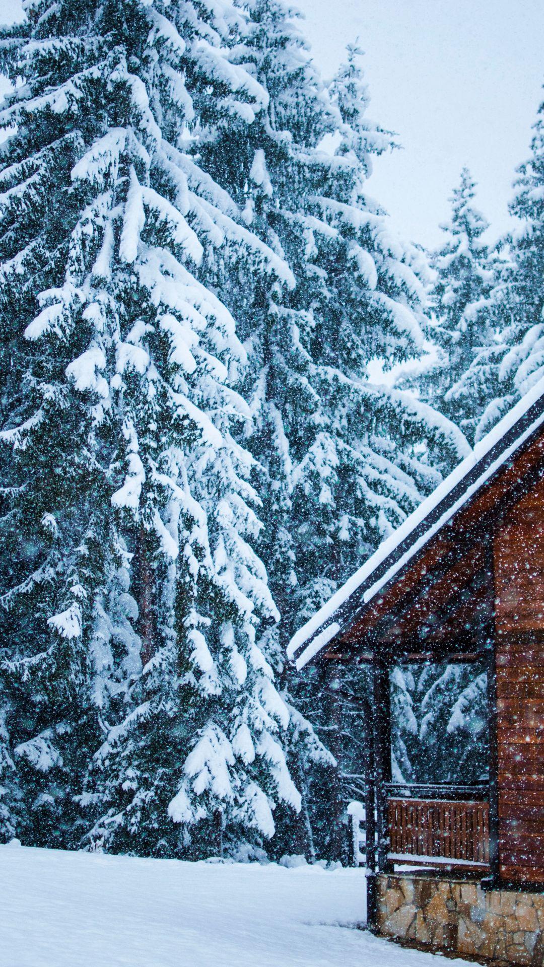 Snowfall House Tree Snow Layer Winter Wallpaper Winter Wallpaper Snowfall Wallpaper Snowfall