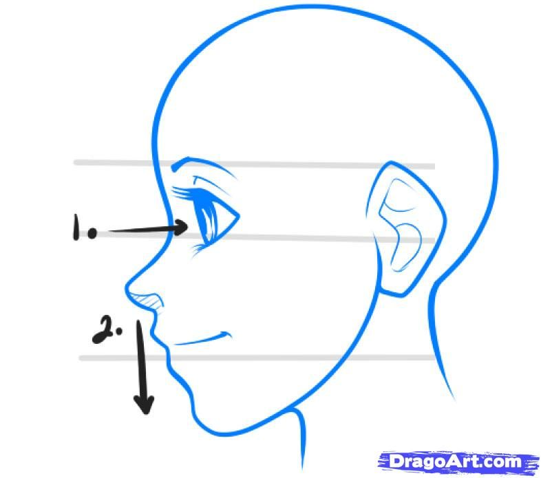 How To Draw Head Angles How To Draw Anime Profiles Step 1 Anime Drawings Cartoon Drawings Body Template