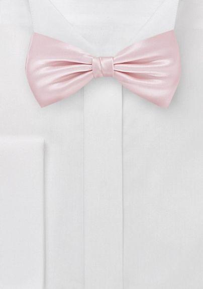 Pink Bowtie Groom Http Trendybride Net Beautiful Blush Hues Wedding Inspiration Rosa Fliege Fliege Hochzeit Seide