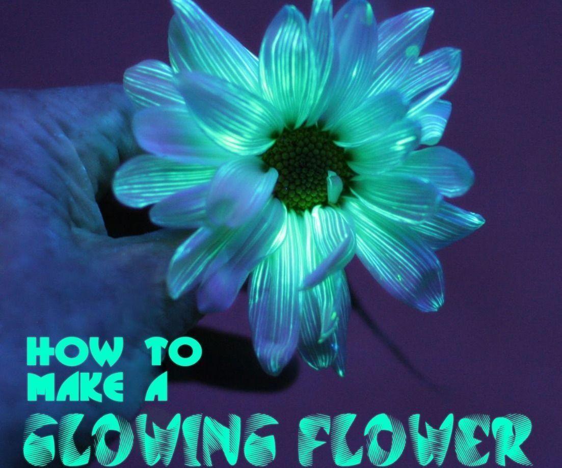 Glowing flower glowing flowers glow in dark paint glow