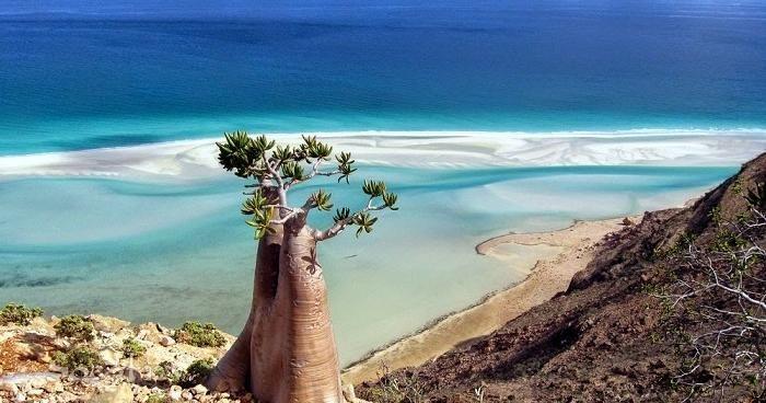 Conoce Los Lugares Más Extraños Del Mundo Lugares Hermosos Océano Indico Lugares Preciosos