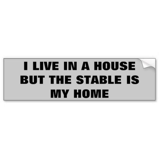 Horse trailer bumper sticker