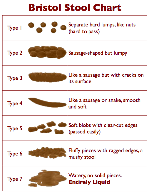 Do you know what your poop is telling you?  Can you tell if it's a normal BM, constipation, or diarrhea?  It's time to talk about it... with pictures!
