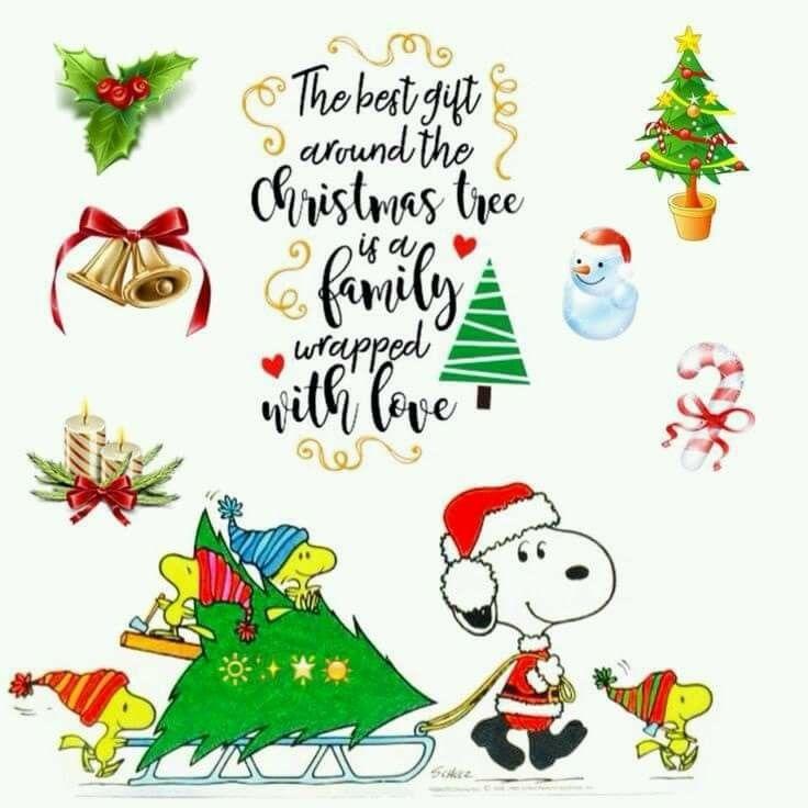 Pin de Lisa Detrick en Snoopy   Pinterest   Nietos y Navidad