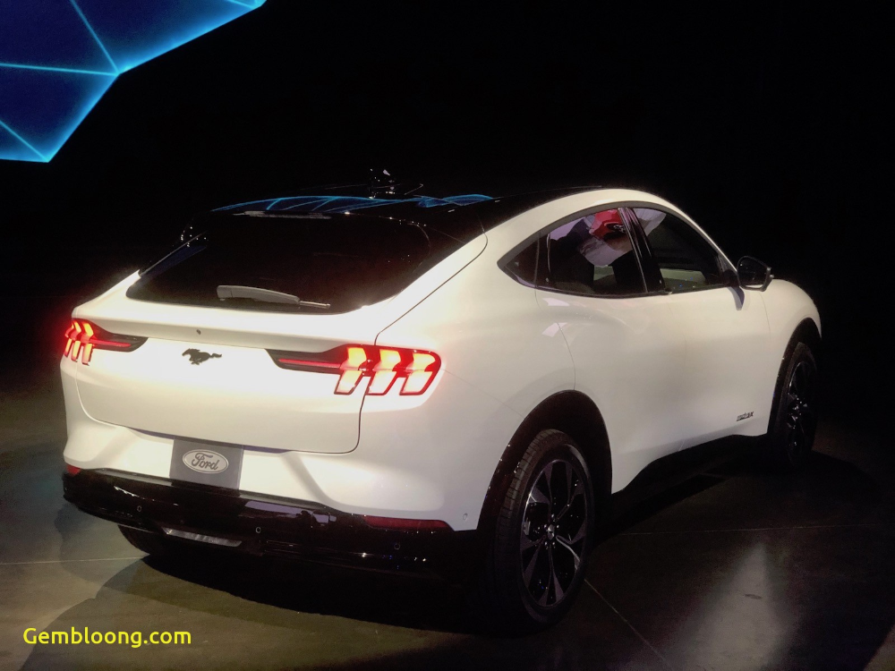 Mustang Mach E New Mustang Mach E Takes Aim At Tesla Model Y New Mustang Tesla Model Mustang