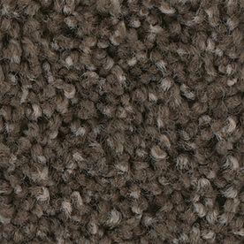 Stainmaster Foundry Ii 12 Ft Petprotect Garden Soil Plush Carpet Sample S796049garden S 1724 Carpet Samples Plush Carpet Carpet