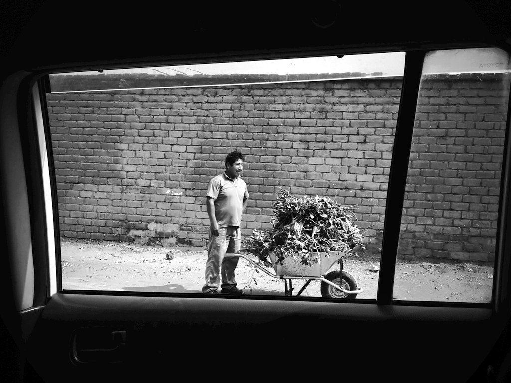 """""""Framing around (the gardener)"""", 3° riScatto urbano di Eric Herrera. Saranno conteggiati i RT al seguente tweet: https://twitter.com/RenHoeck/status/778050777868795910"""