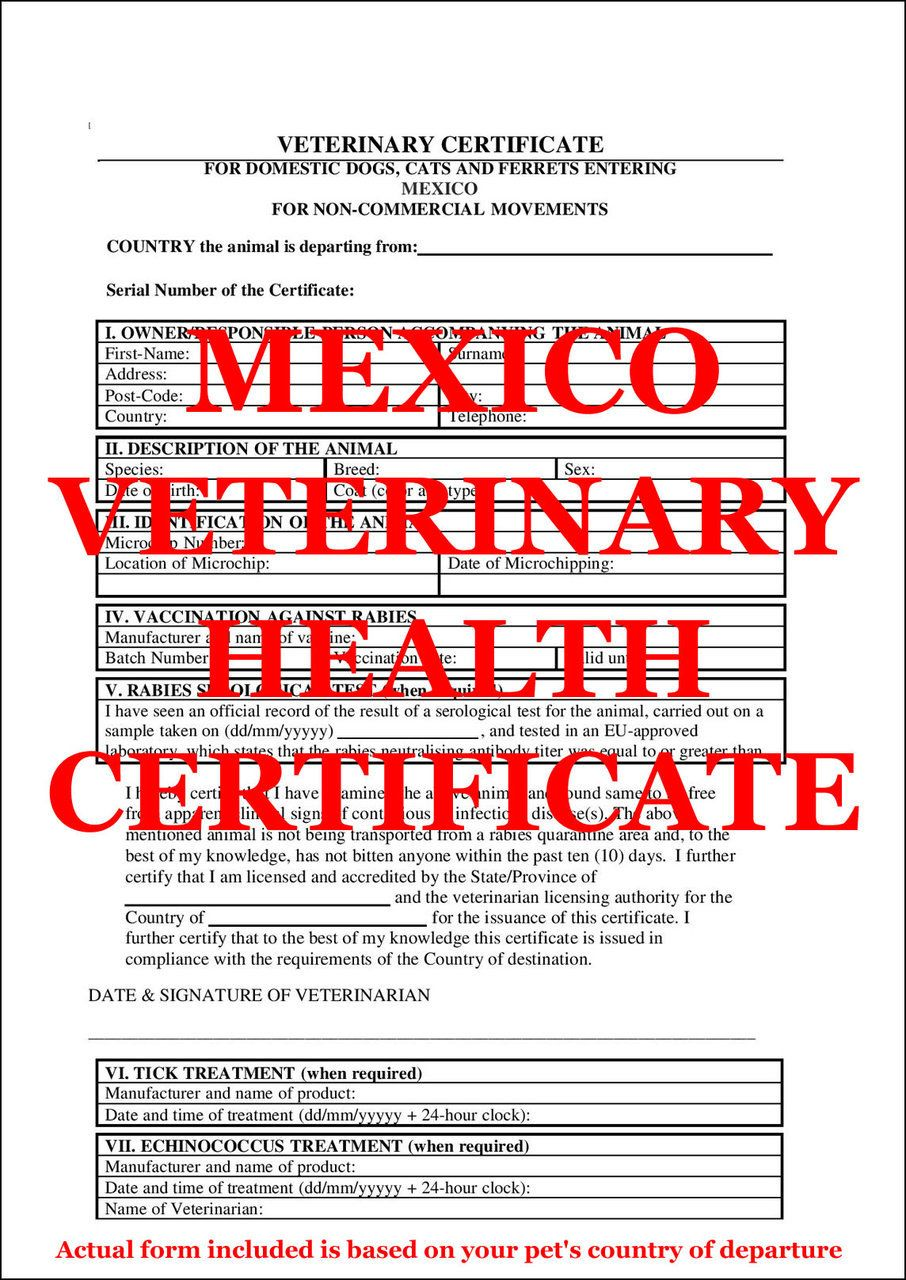 Pet Passport Mexico  Dog And Cat