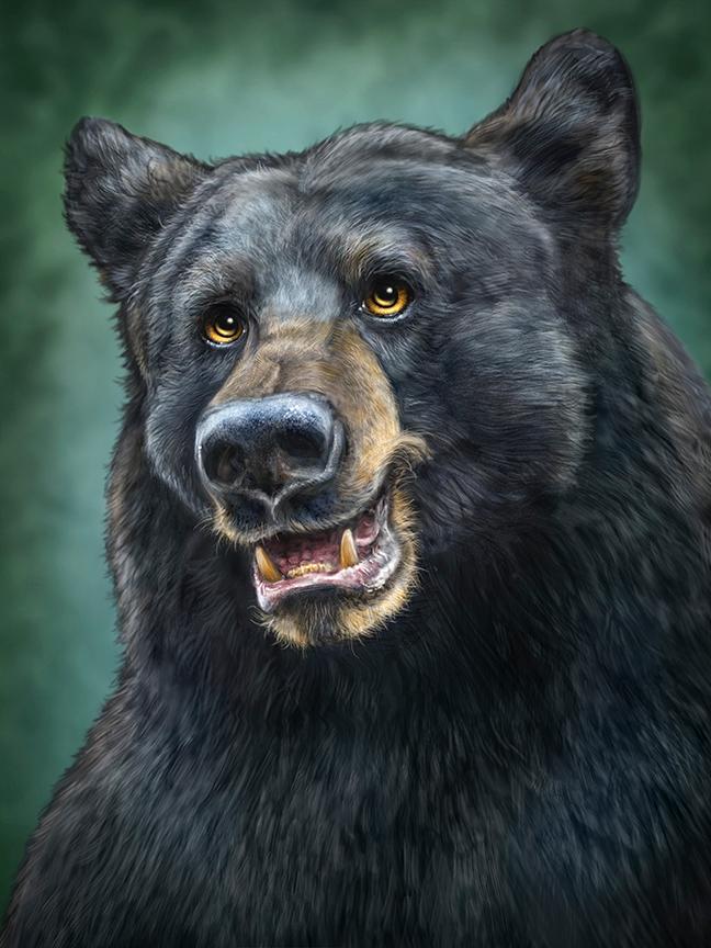 Black Bear Totem Toucanvas Bear Totem Black Bears Art Black Bear