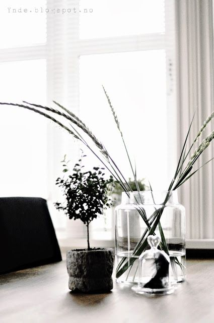 Beachstraws in a TineK vase