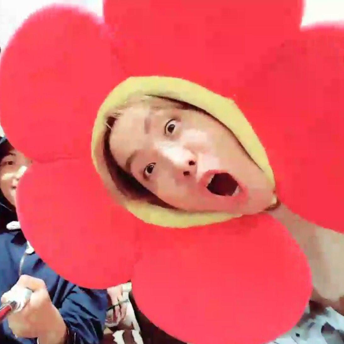 Oh Gosh Every Army S Flower Indeed Hai Hước Meme Chuyện Vui