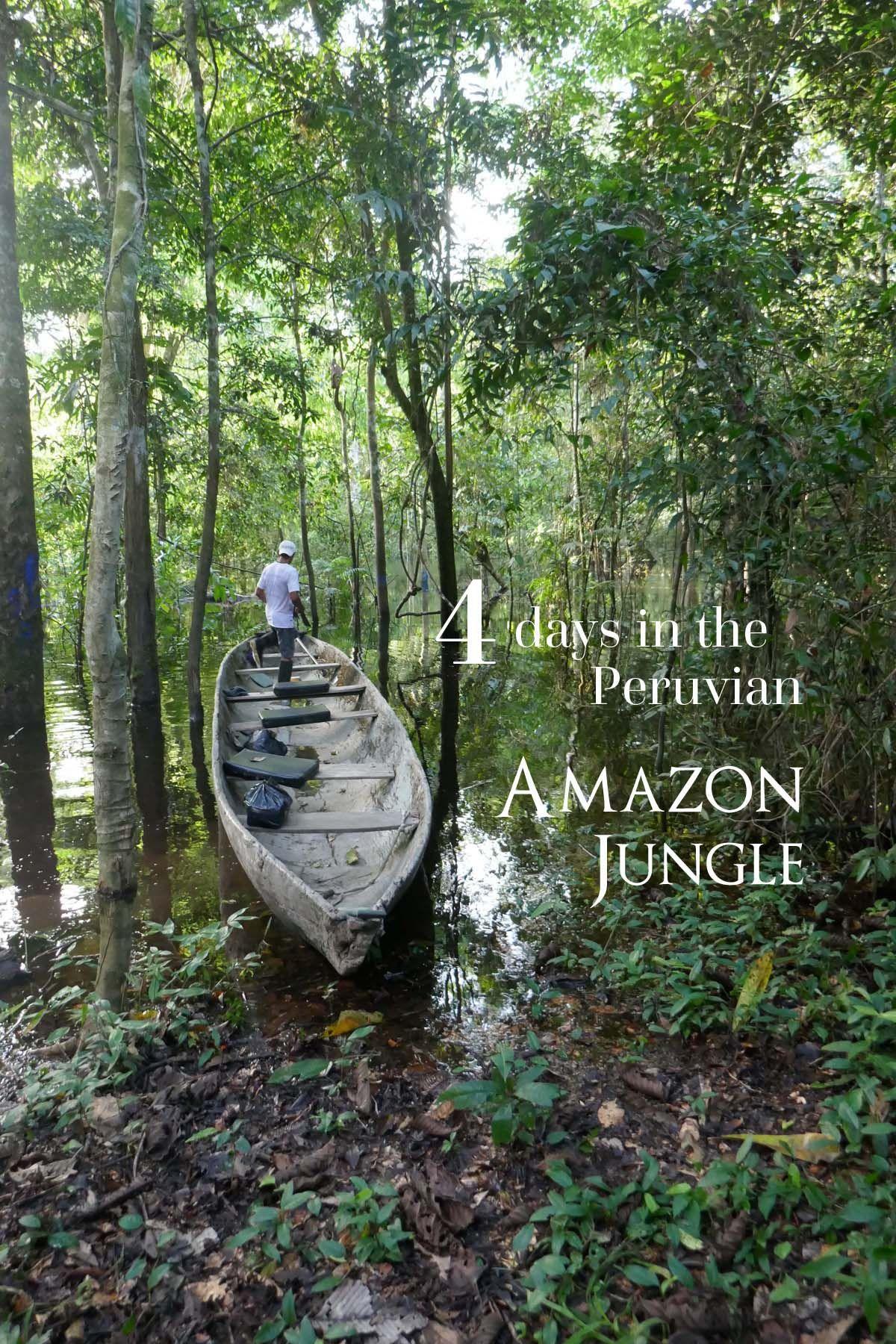Peru Amazon Expedition Iquitos Iquitos Amazon Jungle Food
