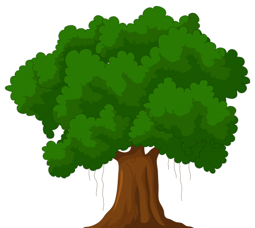 Cartoon Green Tree Png Clipart Best Web Clipart Gambar Menggambar Pohon Pohon