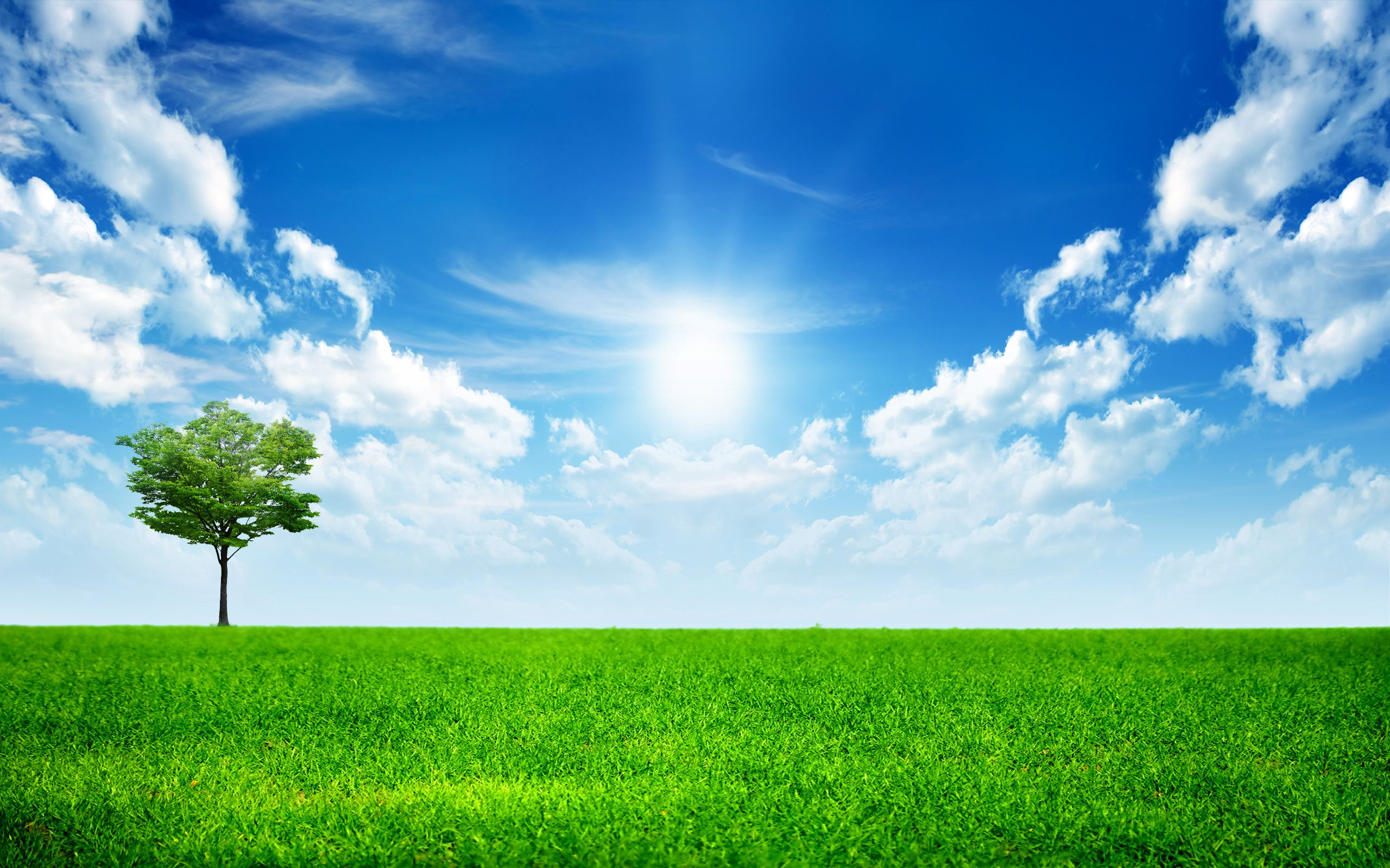 Sunny Bright Day Nature Wallpapers Green Nature Wallpaper Landscape Wallpaper Blue Sky Wallpaper