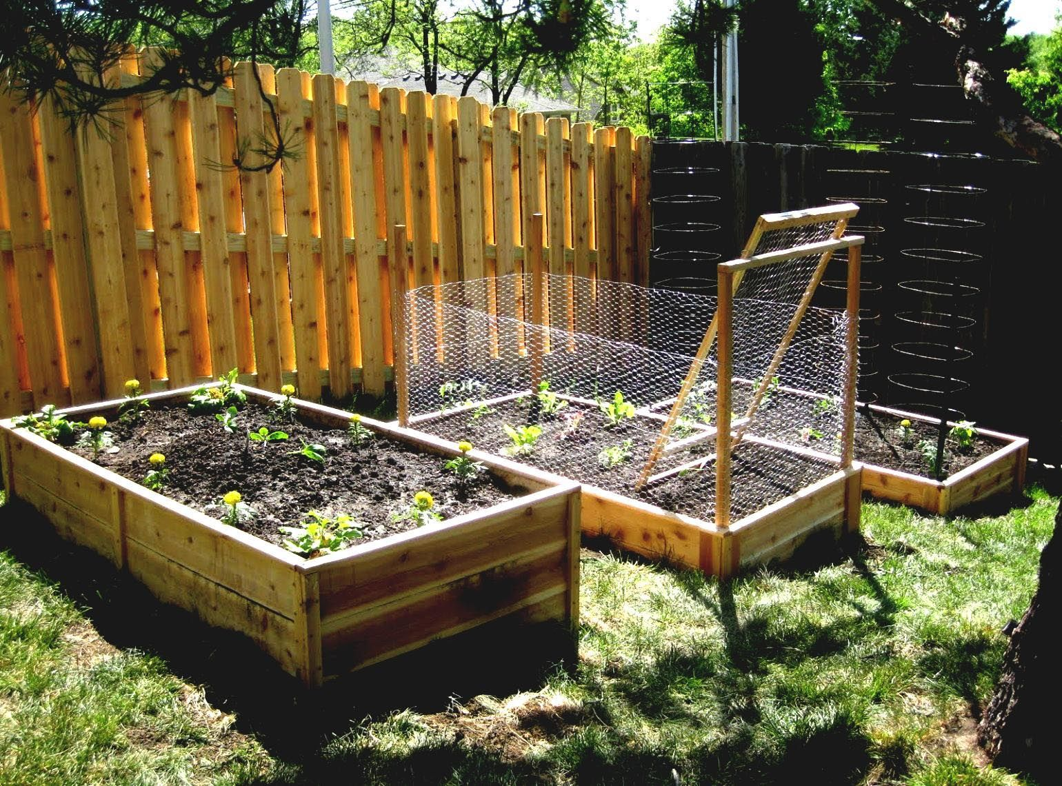 Raised Vegetable Garden Fence | Garden Ideas | Pinterest | Raised ...