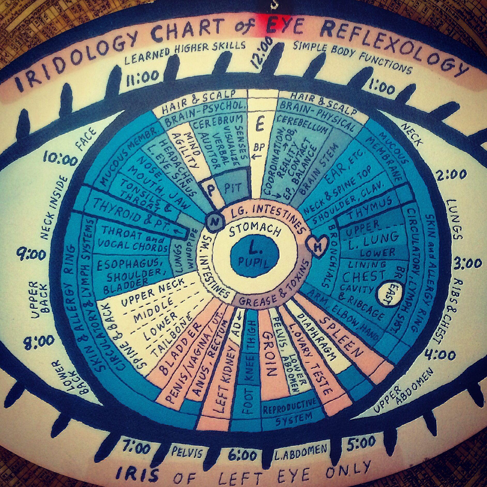 Iridology chart of eye reflexology irydology pinterest iridology chart of eye reflexology geenschuldenfo Gallery